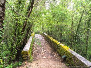 Ruta del agua Mogarraz - Monforte-26