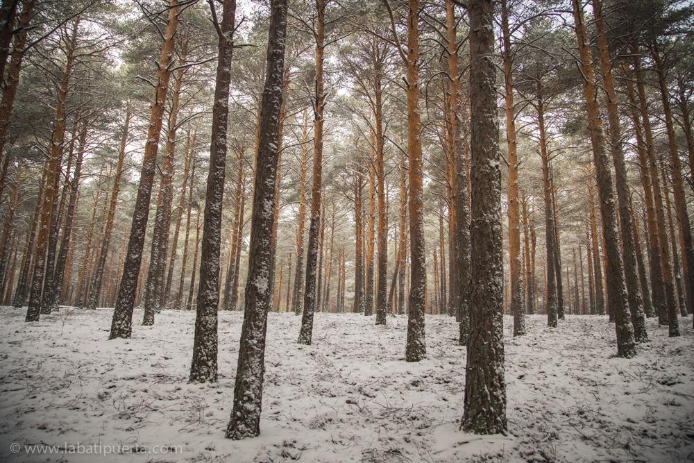 Casas rurales spa la batipuerta de candelario paseos y - Casas rurales en la nieve ...