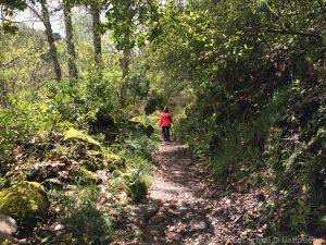 Ruta del agua Mogarraz - Monforte-41